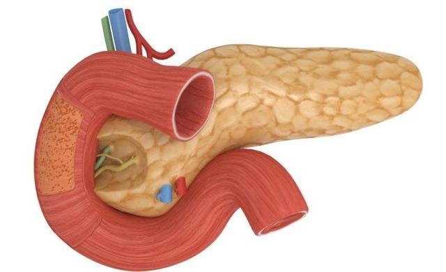 Запалення кишечника: список симптомів і лікування (дієта, медикаменти)