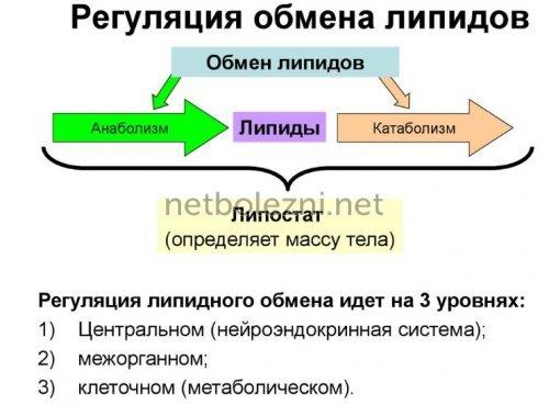 Дексаметазон - інструкція із застосування: уколи в ампулах, аналоги та відгуки