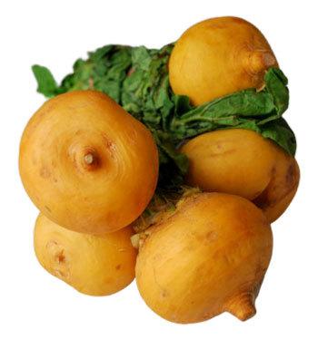 Ріпа: калорійність, користь і шкода для здоров'я організму, вживання при схудненні