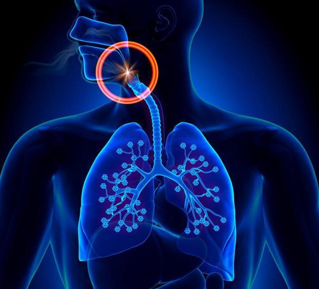 Класифікація хрипів при пневмонії